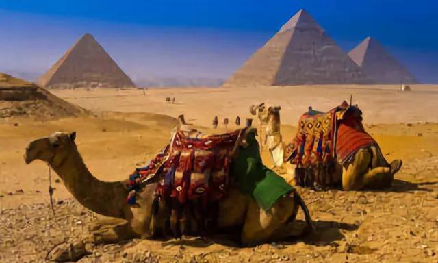 7 главных опасностей подстерегающих туристов в Египте